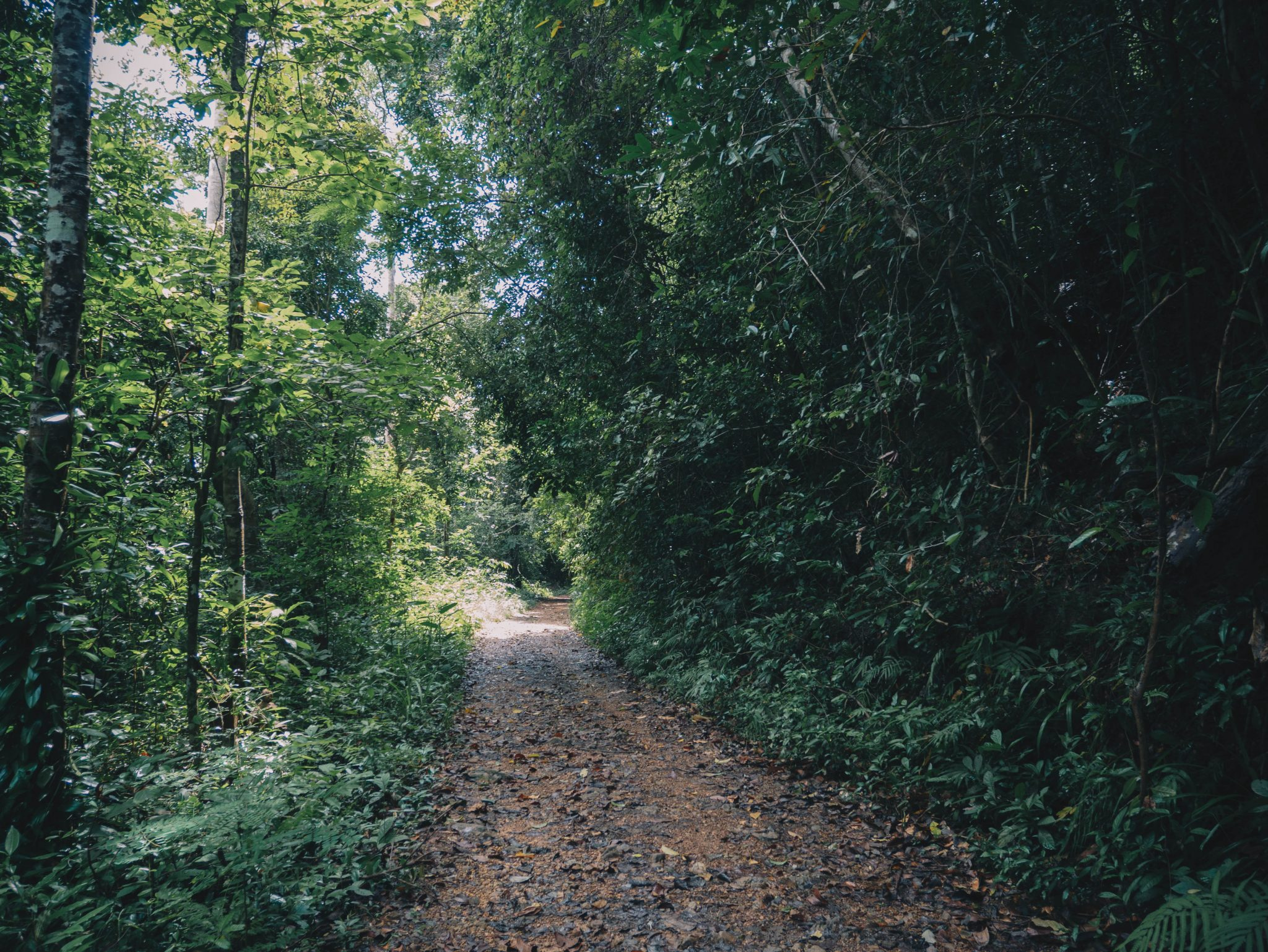 Kep National Park Hiking Trail